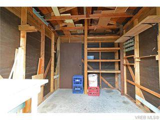 Photo 18: 1550 Pearl St in VICTORIA: Vi Hillside House for sale (Victoria)  : MLS®# 746344