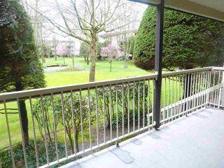 "Photo 12: 120 10631 NO 3 Road in Richmond: Broadmoor Condo for sale in ""ADMIRALS WALK"" : MLS®# R2149695"