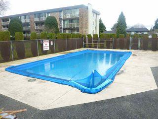 "Photo 17: 120 10631 NO 3 Road in Richmond: Broadmoor Condo for sale in ""ADMIRALS WALK"" : MLS®# R2149695"
