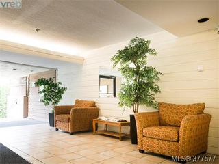 Photo 13: 201 3277 Glasgow Avenue in VICTORIA: SE Quadra Condo Apartment for sale (Saanich East)  : MLS®# 377577