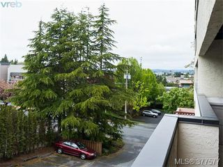Photo 9: 201 3277 Glasgow Avenue in VICTORIA: SE Quadra Condo Apartment for sale (Saanich East)  : MLS®# 377577