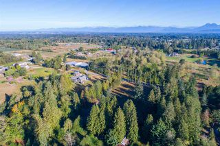 Photo 3: 24968 28 Avenue in Langley: Otter District House for sale : MLS®# R2203594