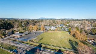 Photo 5: 3425 CELTIC Avenue in Vancouver: Southlands House for sale (Vancouver West)  : MLS®# R2211790