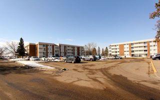 Main Photo: 58 11255 31 Avenue in Edmonton: Zone 16 Condo for sale : MLS®# E4105410