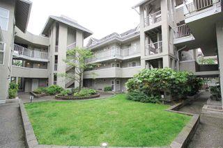 """Photo 2: 116 1570 PRAIRIE Avenue in Port Coquitlam: Glenwood PQ Condo for sale in """"VIOLAS"""" : MLS®# R2316513"""
