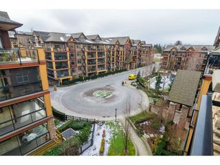 "Photo 20: 571 8328 207A Street in Langley: Willoughby Heights Condo for sale in ""Yorkson Creek"" : MLS®# R2339159"