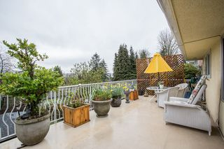 Main Photo: 1231 CLOVERLEY Street in North Vancouver: Calverhall House for sale : MLS®# R2355555