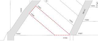 Photo 3: 11840 284 Street in Maple Ridge: Whonnock House for sale : MLS®# R2374042