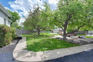 Photo 25: 11631 112 Avenue in Edmonton: Zone 08 House for sale : MLS®# E4160540