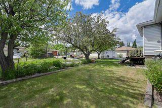 Photo 27: 11631 112 Avenue in Edmonton: Zone 08 House for sale : MLS®# E4160540
