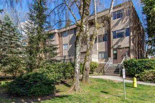 "Main Photo: 32 2434 WILSON Avenue in Port Coquitlam: Central Pt Coquitlam Condo for sale in ""ORCHARD VALLEY"" : MLS®# R2379250"