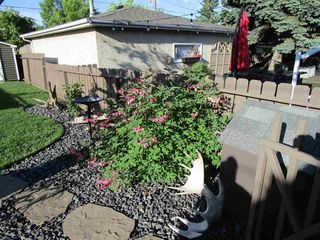 Photo 26: 5312 90 Avenue in Edmonton: Zone 18 House for sale : MLS®# E4169299