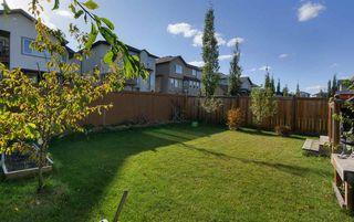 Photo 29: 3907 166 Avenue in Edmonton: Zone 03 House for sale : MLS®# E4215517
