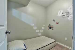 Photo 24: 3907 166 Avenue in Edmonton: Zone 03 House for sale : MLS®# E4215517