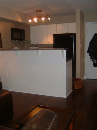 Photo 17: 204 1333 HORNBY Street in Vancouver: Downtown VW Condo for sale (Vancouver West)  : MLS®# V951811