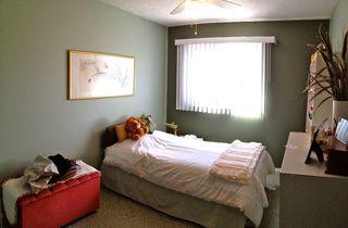 Photo 15: 11255 161 Avenue NW: Edmonton House for sale : MLS®# E3338278