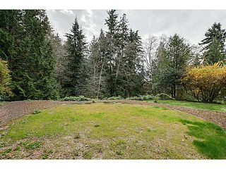 Photo 9: 3698 GLENVIEW Crescent in North Vancouver: Edgemont House for sale : MLS®# V1113649