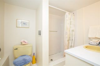 Photo 15: 1403 GROVER Avenue in Coquitlam: Central Coquitlam House for sale : MLS®# R2040902