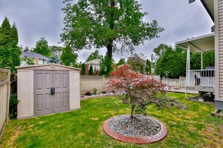 Photo 19: 10329 167A Street in Surrey: Fraser Heights House for sale (North Surrey)  : MLS®# R2073553
