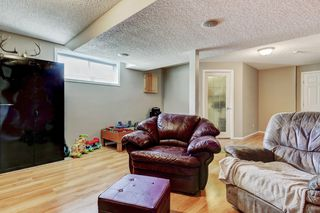Photo 24: 101 Copperfield Gardens SE in Calgary: House for sale : MLS®# C4019487