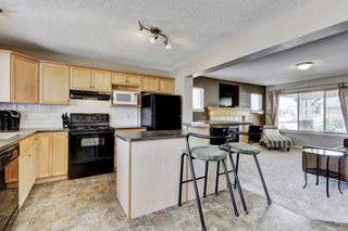 Photo 10: 101 Copperfield Gardens SE in Calgary: House for sale : MLS®# C4019487