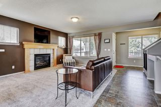 Photo 13: 101 Copperfield Gardens SE in Calgary: House for sale : MLS®# C4019487