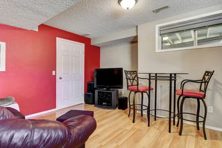 Photo 25: 101 Copperfield Gardens SE in Calgary: House for sale : MLS®# C4019487