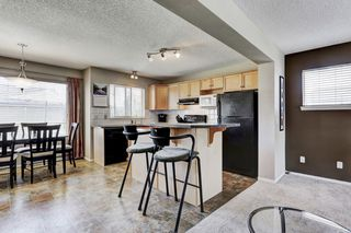 Photo 11: 101 Copperfield Gardens SE in Calgary: House for sale : MLS®# C4019487