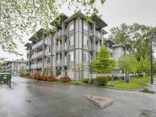 """Photo 1: 310 13277 108 Avenue in Surrey: Whalley Condo for sale in """"Pacifica"""" (North Surrey)  : MLS®# R2163700"""