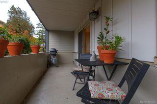 Photo 20: 108 1436 Harrison St in VICTORIA: Vi Downtown Condo for sale (Victoria)  : MLS®# 773384