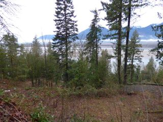 Photo 11: 42983 OLD ORCHARD Road in Chilliwack: Chilliwack Mountain Land for sale : MLS®# R2234304