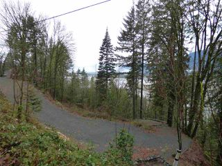 Photo 7: 42983 OLD ORCHARD Road in Chilliwack: Chilliwack Mountain Land for sale : MLS®# R2234304