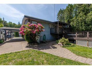 Photo 19: 34563 LABURNUM Avenue in Abbotsford: Abbotsford East House for sale : MLS®# R2268545