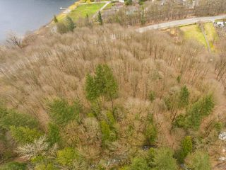 Photo 11: 43795 LOUGHEED Highway in Mission: Lake Errock Land for sale : MLS®# R2301813