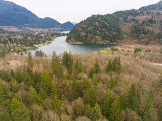Photo 8: 43795 LOUGHEED Highway in Mission: Lake Errock Land for sale : MLS®# R2301813