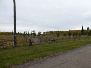 Photo 26: 465064 Hwy 795: Rural Wetaskiwin County House for sale : MLS®# E4131426