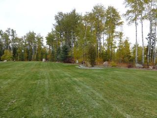 Photo 24: 465064 Hwy 795: Rural Wetaskiwin County House for sale : MLS®# E4131426