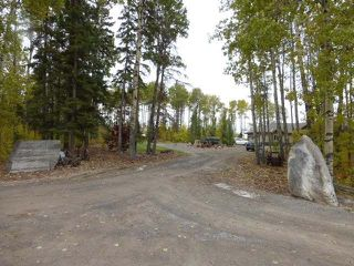 Photo 29: 465064 Hwy 795: Rural Wetaskiwin County House for sale : MLS®# E4131426
