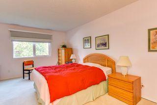 Photo 11: 211 14810 51 Avenue in Edmonton: Zone 14 Condo for sale : MLS®# E4146035