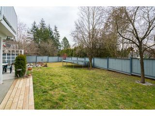 Photo 20: 34932 GLENALMOND Place in Abbotsford: Abbotsford East House for sale : MLS®# R2348997