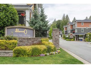 "Main Photo: 16 11461 236 Street in Maple Ridge: Cottonwood MR Townhouse for sale in ""2 BIRDS"" : MLS®# R2385561"