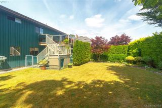 Photo 33: 4159 Tuxedo Drive in VICTORIA: SE Lake Hill Single Family Detached for sale (Saanich East)  : MLS®# 413154