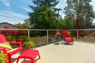 Photo 31: 4159 Tuxedo Drive in VICTORIA: SE Lake Hill Single Family Detached for sale (Saanich East)  : MLS®# 413154