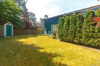 Photo 34: 4159 Tuxedo Drive in VICTORIA: SE Lake Hill Single Family Detached for sale (Saanich East)  : MLS®# 413154