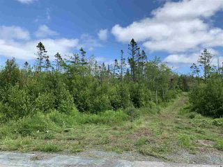 Photo 3: 43 Kittiwake Ridge in Halibut Bay: 9-Harrietsfield, Sambr And Halibut Bay Vacant Land for sale (Halifax-Dartmouth)  : MLS®# 202013279