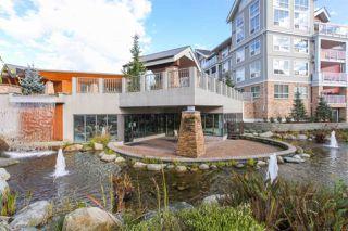 Photo 2: 405 6430 194 Street in Surrey: Clayton Condo for sale (Cloverdale)  : MLS®# R2482000