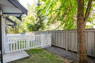 """Photo 21: 35 20176 68 Avenue in Langley: Willoughby Heights Townhouse for sale in """"Steeplechase"""" : MLS®# R2489132"""