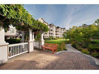 """Photo 8: # 434 5888 DOVER CR in Richmond: Riverdale RI Condo for sale in """"PELICAN POINTE"""" : MLS®# V941670"""