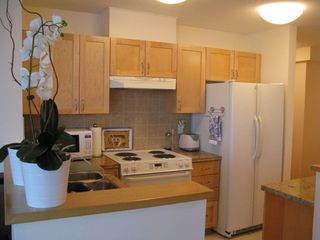 Photo 7: 1102 1570 7TH Ave W in THE TERRACES ON 7TH: Fairview VW Home for sale ()