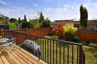 Photo 21: 20118 71A Avenue in Langley: Willoughby Heights House for sale : MLS®# F1450325